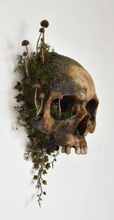 Images Terrifiantes, Skull Reference, Witch Aesthetic, Skull And Bones, Skull Art, Goblin, Art Inspo, Illustration, Cool Art