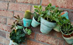 By the Way: Clay Pot Wreath + Succulents = Smile! Succulent Soil, Succulent Wreath, Cacti And Succulents, Clay Pot Projects, Easy Fall Wreaths, Wire Wreath Forms, Cool Backgrounds, Clay Pots, Bottle Crafts