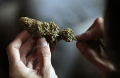 Talk about a Rocky Mountain High - the feds won't go after pot use in CO + other states.