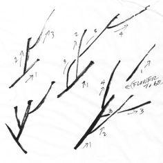 Back to Basics 3: plum blossom (part 1)