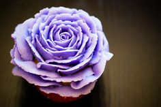 Violet Rose Cupcake