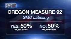 "GMO ballot measure 'too close to call' Despite a massive discrepancy in ad spending in favor of pro-GMO corporations, the ""Yes"" side of Oregon's GMO labeling Measure 92 has made up ground, and the race is now considered to be ""too close to call"" according political analyst Tim Hibbitts of the FOX 12"