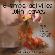 5 activiteiten, Herfst