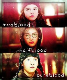 Wait what? Harry Potter was a pure blood, because both his parents were wizards, and mud blood is a very offensive term!