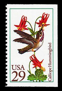 Calliope hummingbird stamp, issued October 9, 1992.
