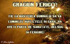 Fie ca Nașterea Domnului să vă lumineze sufletele și casa, să aveți parte de sănătate, belșug și fericire! Dns, Christmas, Mariana, Frases, Xmas, Navidad, Noel, Natal, Kerst