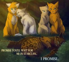 I know the two on the right are sandstorm and firestar Warrior Cats Comics, Warrior Cat Memes, Warrior Cats Series, Warrior Cats Books, Warrior Cat Drawings, Warrior Cats Fan Art, Cat Comics, Cat Brain, Serval Cats