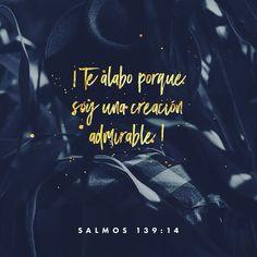 Dios mío tú fuiste quien me formó en el vientre de mi madre. Tú fuiste quien formó cada parte de mi cuerpo. Salmos 139:13 @youversion @ibvcp #buenosdias #islademargarita #venezuela #goodmorning