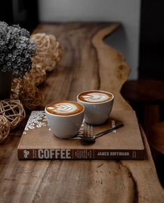 The Advantages of Cold Brew Coffee Photography Ideas If you relish your brew at the coffee bar, make sure to get a bottle to enjoy later. The cold bre. But First Coffee, I Love Coffee, Coffee Break, My Coffee, Morning Coffee, Funny Coffee, About Coffee, Italy Coffee, Cuban Coffee