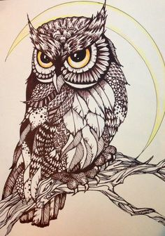 Zendoodle Style / Zen Drawing Owl T-Shirts (Multiple Sizes and Styles) on Etsy, $20.00