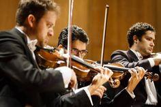 Naipe de violinos. Foto: Cicero Rodrigues. OSB - Orquestra Sinfônica Brasileira