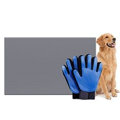 cat food mat waterproof - Dog Feeding Silicone Mat And Pet Grooming Glove - Non-stick FDA Waterproof Pet Cat Bowl Food Pad - Pet Hair Remover De-Shedding Brush Mitten >>> To view further for this item, visit the image link. (This is an affiliate link) Cat Bowl, Cat Shedding, Dog Store, Best Dog Food, Dog Pin, Dog Items, Dog Feeding, Love Pet, Pet Grooming