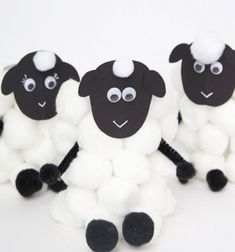 These paper roll sheep are so easy for kids of all ages to make. It's the perfect spring craft for kids! Spring Crafts For Kids, Spring Projects, Diy Crafts For Kids, Easy Crafts, Diy Projects, Glue Crafts, Diy Arts And Crafts, Paper Sunflowers, Sheep Crafts