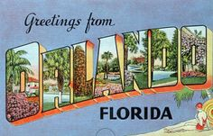 Greetings from Orlando, Florida - Large Letter Postcard by Shook Photos, via…