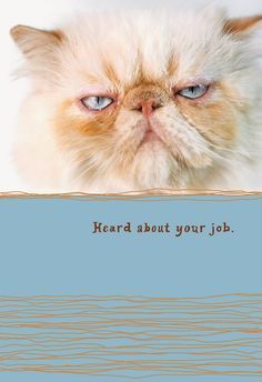 American greetings launches good vibrations cards greeting cards hallmark releases details about job loss greeting cards m4hsunfo