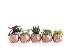 Oleander and Palm: Mini Rose Gold Pumpkin Planters