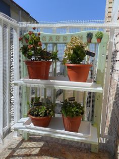 jardim vertical reciclado Plants, Wall Trellis, Antique Furniture, Plant, Planets