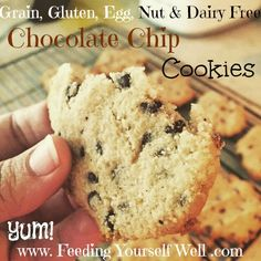 Grain, Egg, Nut & Gluten Free -  AIP - Paleo - Chocolate Chip Cookies - www.FeedingYourselfWell.com