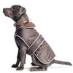 Ancol #muddy paws stormguard #chocolate #brown waterproof fleece lined dog coat,  View more on the LINK: 	http://www.zeppy.io/product/gb/2/191834444100/