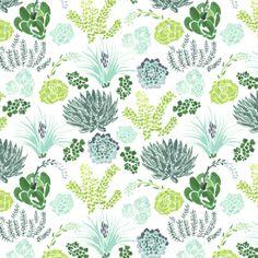 Cactus Bloom — Rae Ritchie