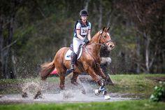 Online Saddle Auction to Benefit Olivia Inglis Scholarship http://www.horseproperty.com.au/company/blog/69-online-saddle-auction-to-benefit-olivia-inglis-scholarship #Equestrian #HorseProperty #BatesSaddles #OliviaInglisScholarship