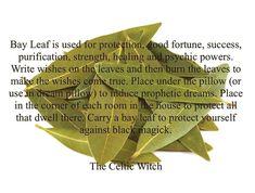 Manifestation Journal Example - Manifestation Journal Law Of Attraction - Morning Manifestation Quotes - - Hoodoo Spells, Magick Spells, Magic Herbs, Herbal Magic, Luck Spells, Money Spells, Wiccan Spell Book, Witch Spell, Smudging Prayer