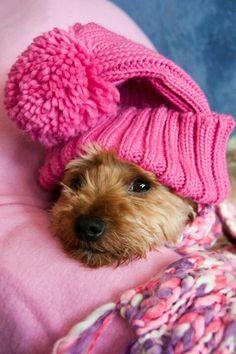 Blijf warm.