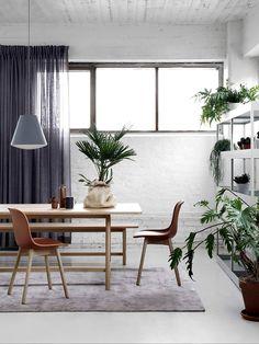 Un intérieur aux tonalités douces, réhaussées par des plantes, ici exposées comme on pourrait le faire avec des œuvres d'art... #interiordesign #homedecor #decorationinterieure #agencementinterieur