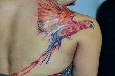 Watercolor macaw tattoo - 65  Examples of Watercolor Tattoo  <3 !