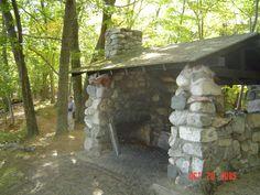 Trail shelter in Ludington State Park at Ludington, MI, Theo's favorite resting spot! Ludington Michigan, Ludington State Park, Lake Michigan, Great Lakes, Ol, State Parks, Places Ive Been, Shelter, Woods