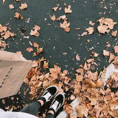Autumn Cozy, Autumn Trees, Autumn Leaves, Fall Winter, Autumn Aesthetic, Aesthetic Photo, Fall Pictures, Fall Photos, Autumn Inspiration