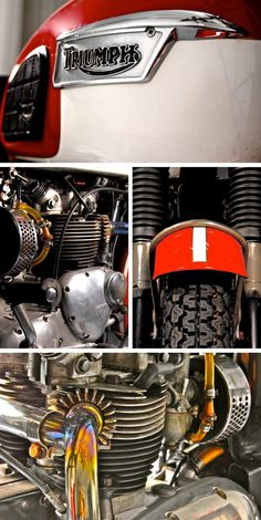 Triumph Motorbikes, Triumph Bobber, Triumph Bonneville, Triumph Motorcycles, Cars And Motorcycles, Classic Motors, Classic Bikes, Triumph Rocket, British Motorcycles