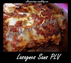 Lasagne SANS plv