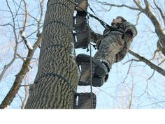Stealth Step Tree Stand Ladder System Is The Lightest