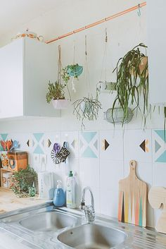 tiles and plants in the kitchen
