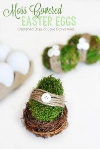 Moss Covered Easter Eggs - Cherished Bliss