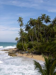 Talamanca, Costa Rica via woophy.com