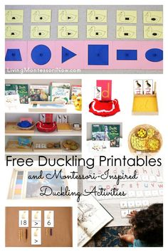 Free duckling printables and Montessori-inspired duckling activities for multiple ages; perfect for home or classroom; great for a duckling unit, bird unit, spring unit, or literature-based unit - Living Montessori Now Montessori Color, Montessori Preschool, Homeschool Kindergarten, Montessori Materials, Preschool Themes, Homeschool Curriculum, Homeschooling, Make Way For Ducklings, Farm Unit