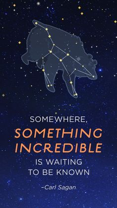 With Star Walk Kids, you can experience the wonders of the universe. Point your phone up to the sky, and the app will map your exact location to the constellations above you. It's perfect for spending quality time with your kids.