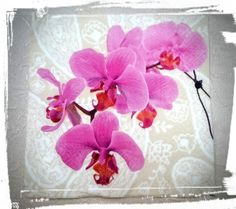 Your place to buy and sell all things handmade Napkin Decoupage, Decoupage Paper, Paper Craft, Pink Orchids, Tea Box, Party Napkins, General Crafts, Wooden Decor, Picture Show