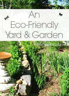 Big changes can be made right in your very own backyard. How eco-friendly is your yard and garden? Get tips here.