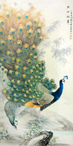 artist unknown via Leticia Vervloet Peacock Painting, Silk Painting, Painting & Drawing, Peacock Artwork, Peacock Images, Peacock Pictures, Chinese Painting, Chinese Art, Chinese Scroll