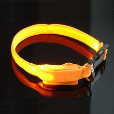 KUSOOFA Luminous Pet Collar Flashing Glow Cat Neck Strap Safety Led Collar -- Hurry! Check out this great product : Cat Collar, Harness and Leash