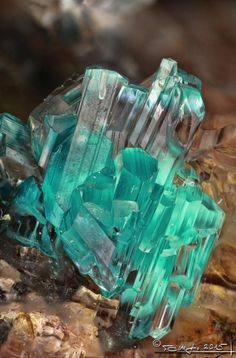 WOW WEDNESDAY Gorgeous GREEN GYPSUM with inclusions of DEVILLINE Raise your hand if you've ever heard of devilline. I'm not raising mine either. Devilline is a calcium, copper sulfate mineral with the chemical formula