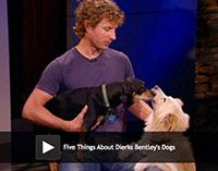 5 Things About Dierks Bentley's Dogs