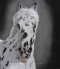 Knabstrupper Horse in Pastel, 30x40cm  #horse #horseportrait #realisticart #art #art_4share #artoftheday #equine #equineart #equineartists #knabstrupper #leopardhorses #pastel #pastelcard #softpastels #realistic_art #drawing