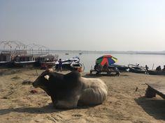 Banks of the River Ganges #varanasi