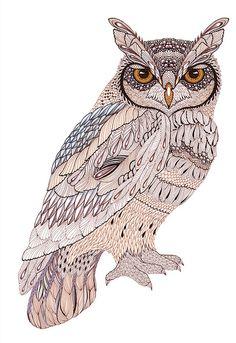 owl - (by ola liola@flickr)