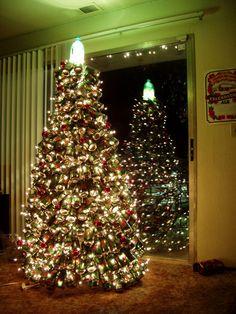 lumières sur l'arbre