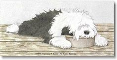 Old English Sheepdog sleeping in food dish...